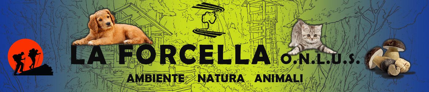 Associazione La Forcella