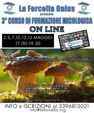 3° Corso Formazione Micologica Online @ ONLINE
