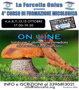 4° Corso Formazione Micologica Online @ ONLINE